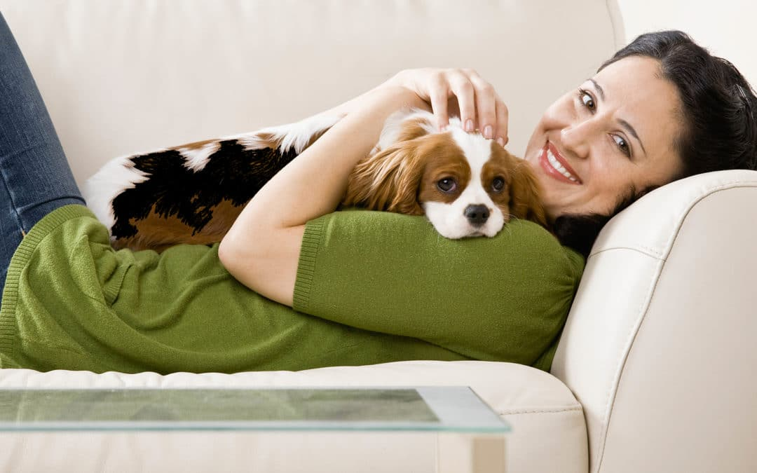New to Boise? Let Us Help with Your Pets!